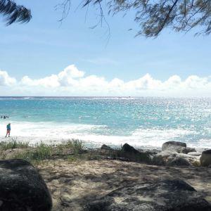 塔加海滩旅游景点攻略图