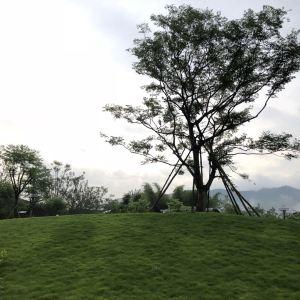 南昆山居温泉度假村旅游景点攻略图