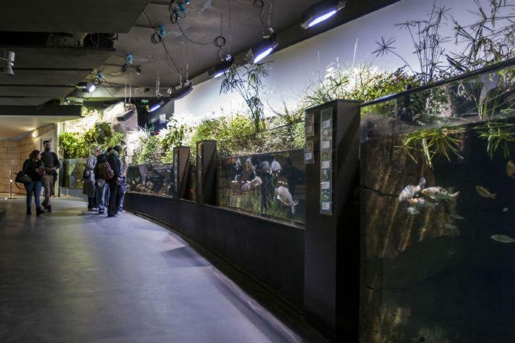 Aquarium de Paris1