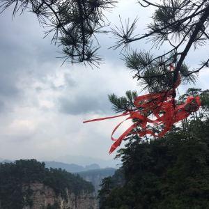 黄石寨旅游景点攻略图