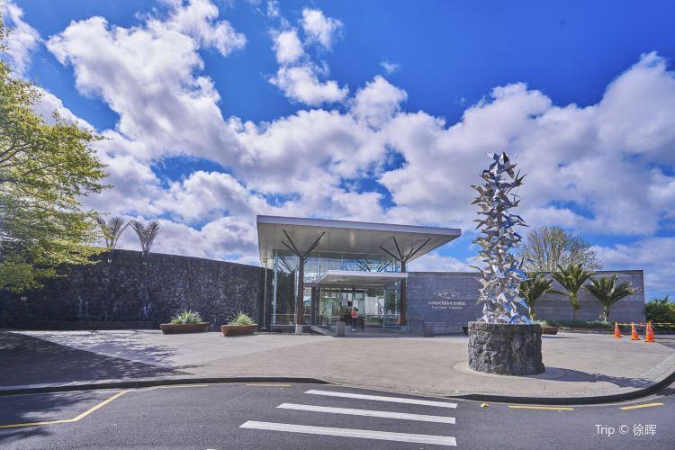 Auckland Botanic Gardens1