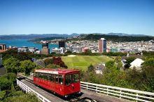 """被忽略的新西兰北岛,可是哈里王子钦点的""""蜜月""""地"""