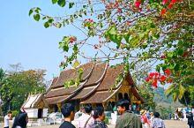 春节不知道去哪?老挝这座法式浪漫小城了解一下