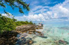 坐私人游艇去大溪地的无人岛上探险