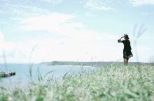 国内风光 这里有海有水,但是仙人掌却长得密集