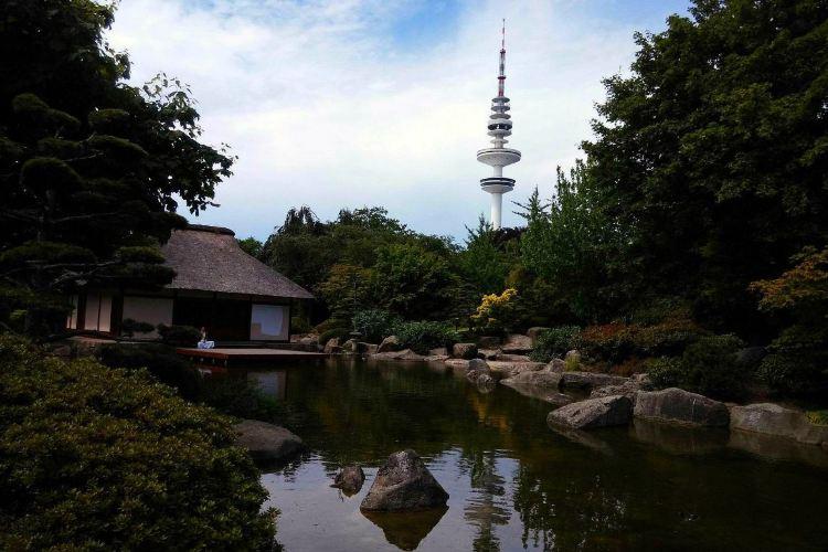 花卉植物園3
