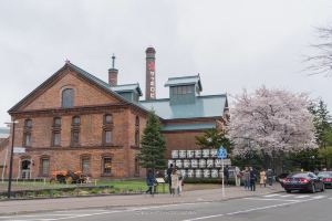 Sapporo,Recommendations