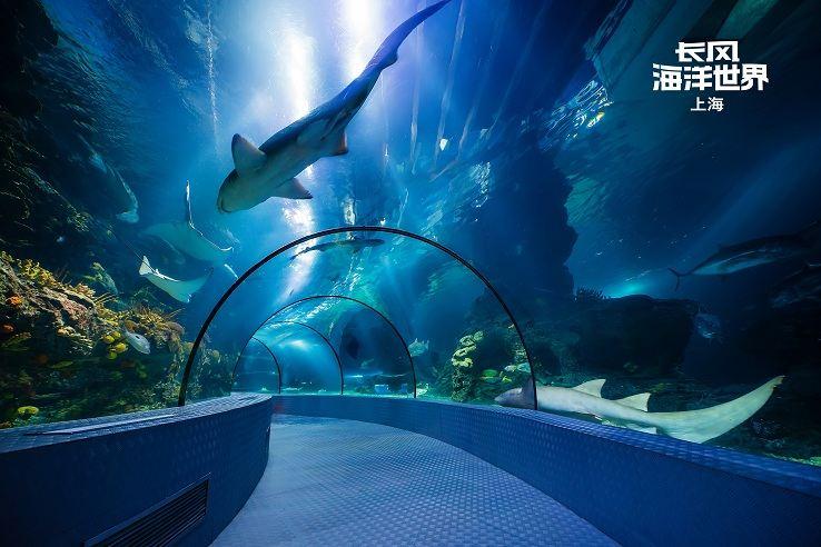 Changfeng Ocean World4