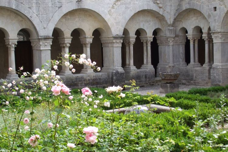 Sénanque Abbey3