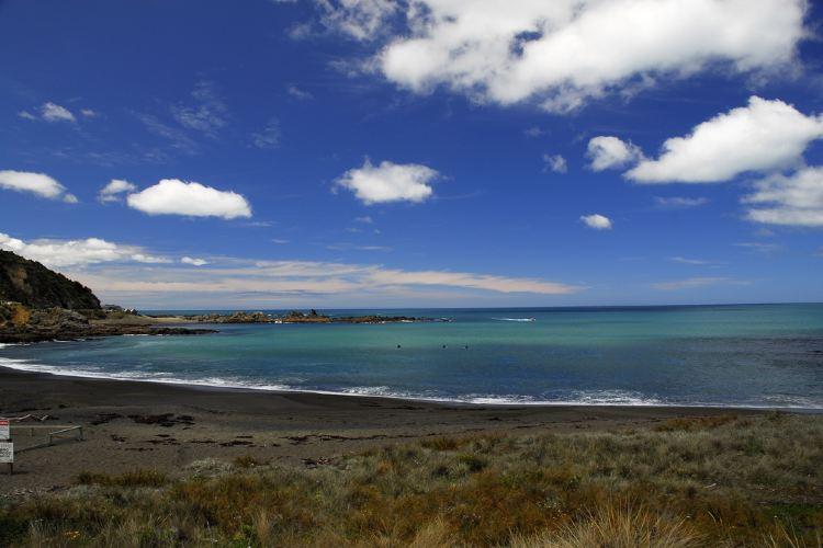 Island Bay1