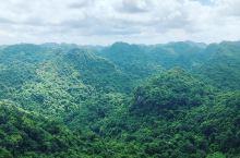吉婆国家公园:越南的宝藏森林和天然氧吧  我一直都特别喜欢自然风景,尤其喜欢山山水水的风景。森林公园