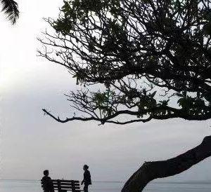 魔幻岛旅游景点攻略图