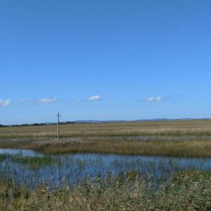 湿地旅游景点攻略图