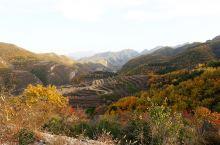 北京最美的秋天,应该来这儿玩