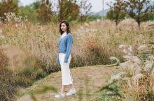韩国|不可错过的金秋釜山