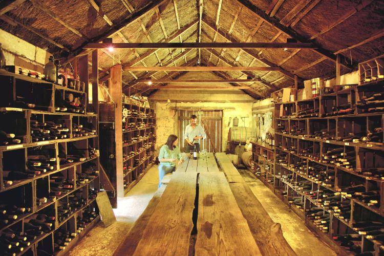Coonawarra Wine Region