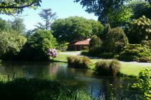 新西兰自驾游第二十天:凯库拉~基督城