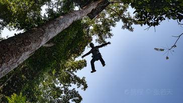 博岩丛林飞跃