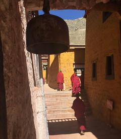[太空游游Ctrip星球游记图片] 出发去西藏