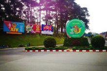 大叻植物园