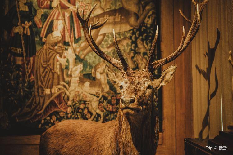 Musée de la chasse et de la nature1