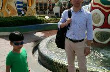 香港海洋公园 对比迪士尼后,觉得海洋公园更适合大一点的小朋友,因为里面的项目更刺激!