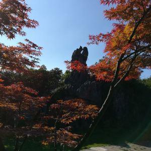 华蓥山石林旅游景点攻略图