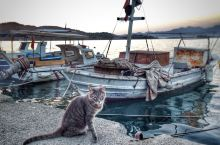 情迷地中海——费特希耶