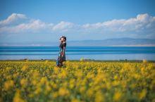 #向往的生活 青海湖,公主的思念