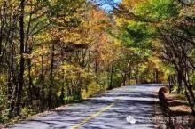 盘点陕西10条最美公路,看完就想去自驾游!