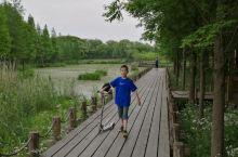 上海青浦郊野公园