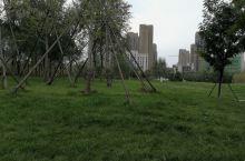 廊坊丹凤公园