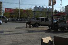干年古县鄄城