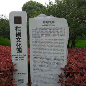 毛主席雕像旅游景点攻略图