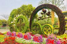"""花中西施:杜鹃花,素有""""花中西施""""之称。 上海杜鹃花展每年如期在滨江森林公园举行,而公园日常的杜鹃花"""