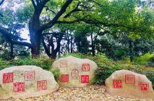 中山公园:位于上海长宁区的中山公园,如今已形成灵巧曲折、地形起伏、坡度自然的园林景色,集欧洲自然式庭