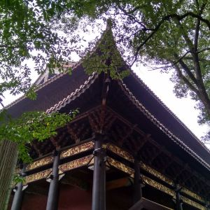 大善寺旅游景点攻略图