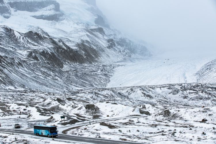 Columbia Icefield1