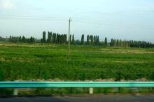 新疆南疆中心库车市—龟兹古城遗址