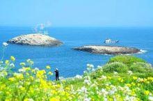 它是距离你最近的海滨城市,接连新开超赞的度假酒店,目测这个夏天要火爆了!