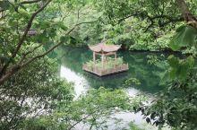 宁海森林温泉度假村......