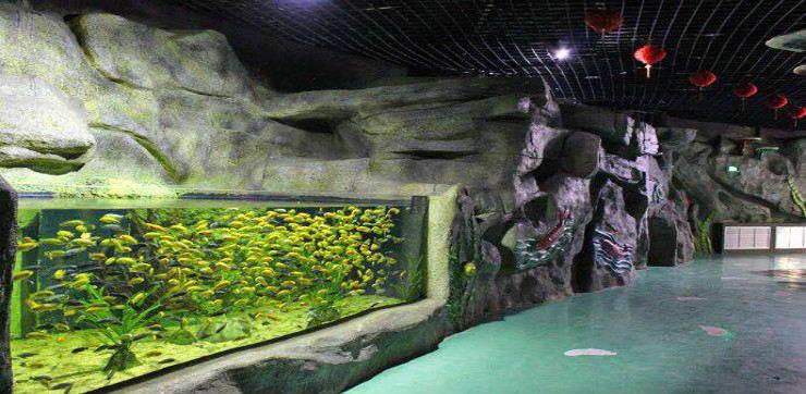 Shijiazhuang Zoo Aquarium2