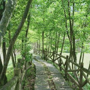 天府花溪谷旅游景点攻略图