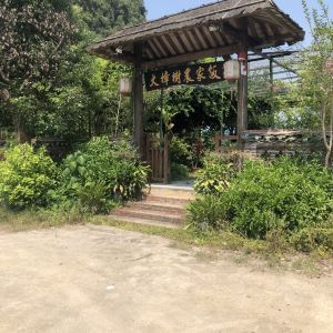 大樟树农家饭旅游景点攻略图