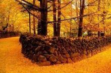 这5个地方,我劝你在秋天不要太黄!