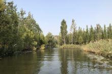 微山湖、台儿庄两日游