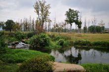 杭州大径山乡村国家公园之一角