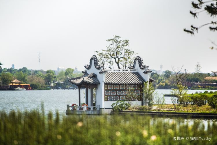 Haizhu National Wetland Park3