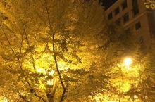 黄金大道之夜色