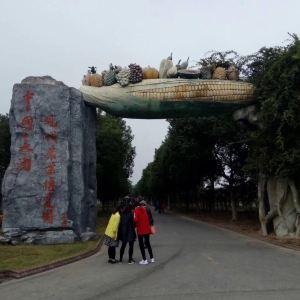 大浦乡村世界旅游景点攻略图
